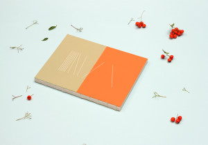 Notebooks for A2